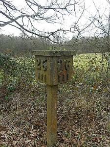 Cuckoo Line, Sussex - Tim Rich