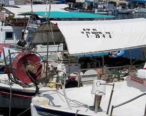 Paphos, Cyprus - Jim Davies
