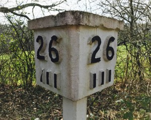 Distance markers on a disused railway in East Sussex. The Cuckoo Line. By Tony Linkson